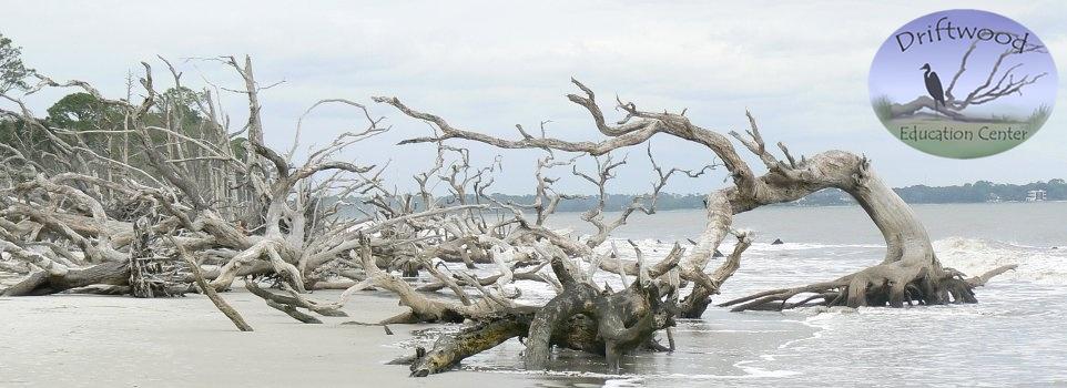 driftwood_education_center