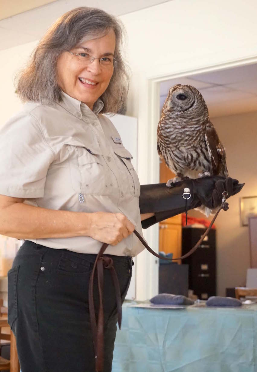 Lesley Royce holds Merlin, a barred owl, who visited Montessori Tides School.