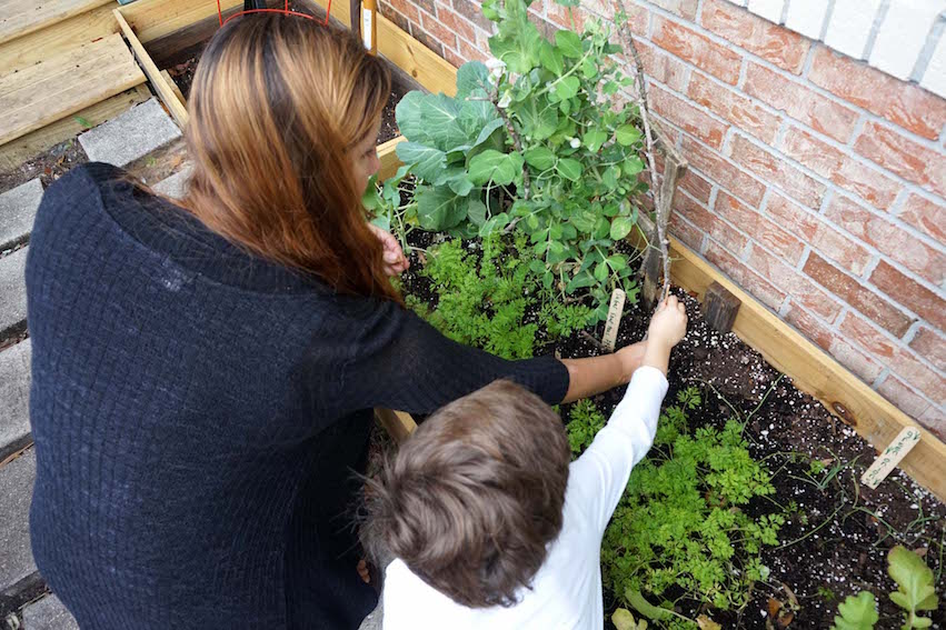 A student plants a couple of seeds with Miss Jessica in the raised bed outside the Lower Elementary classroom.