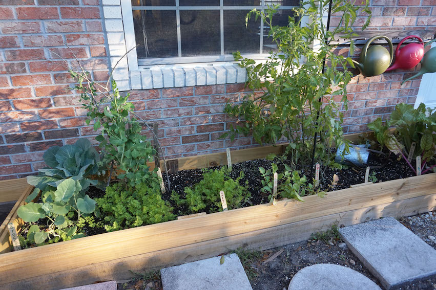 Two new raised beds for gardening are outside the Lower Elementary classroom.