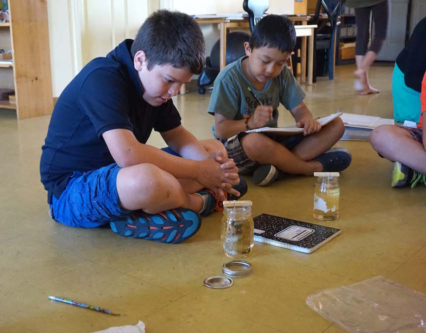 Upper Elementary students set up their rock candy experiments during their chemistry lesson with Miss Fatima, a parent at Montessori Tides School.