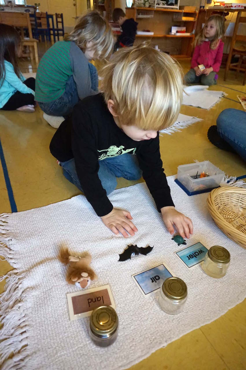 It's great to take photos of Montessori students so engaged in their work that they don't really pay any attention to the camera.