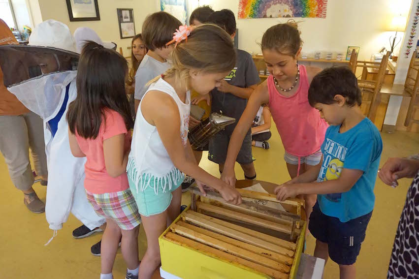 A group of students check out the beekeeping gear Miss Meghan brought to the Lower Elementary classroom.