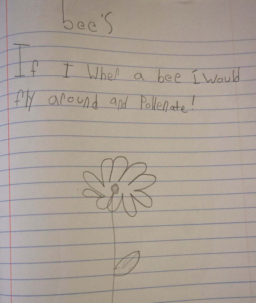 Another Lower Elementary student also chose a worker bee and drew a picture of a flower to pollinate in her nature journal.