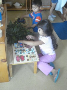 Benefits of Montessori Three Year Cycle: Social Positions