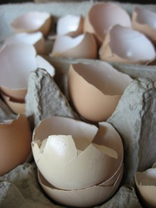 Getting Natural with Egg Shells