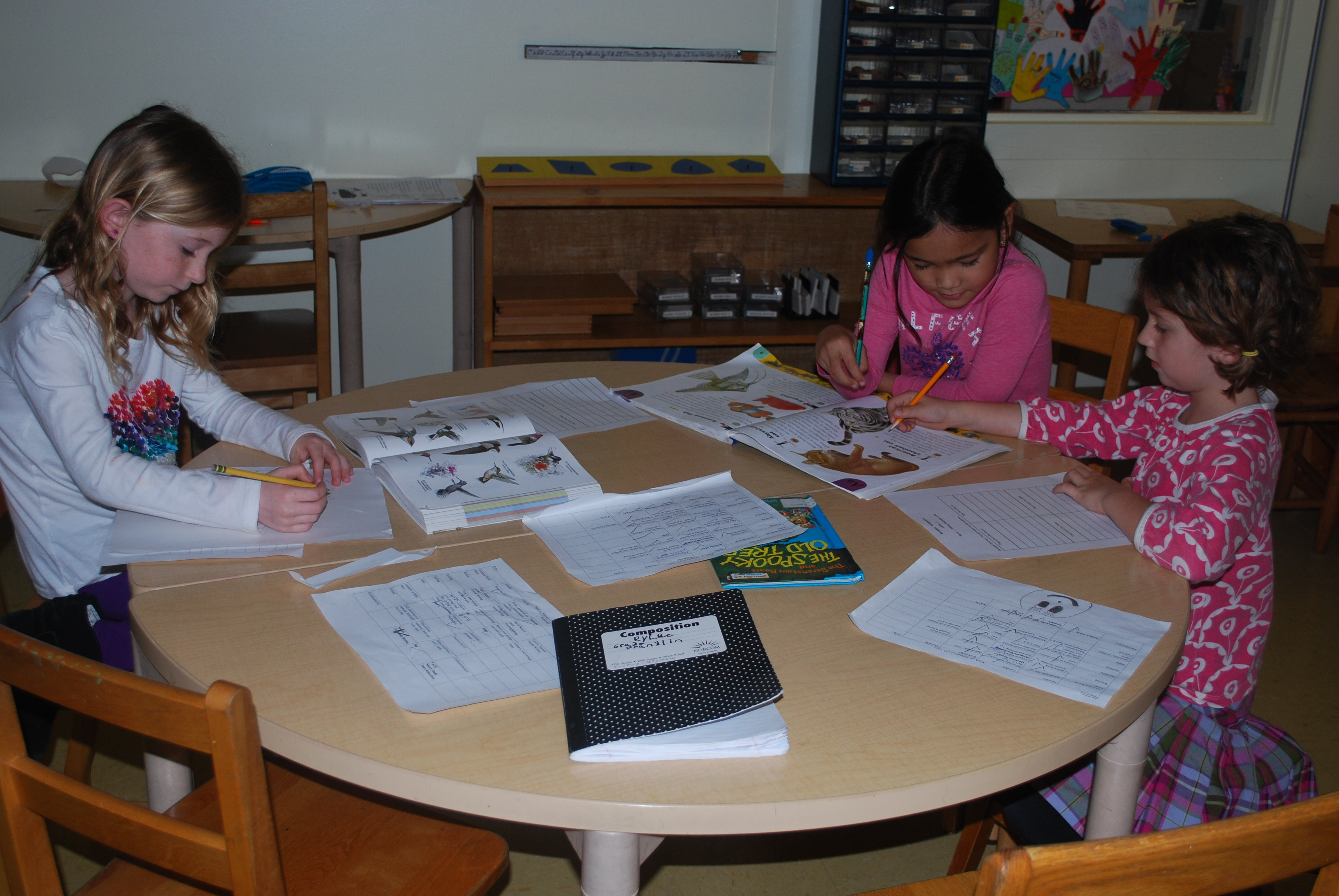 montessori-elementary-conflict