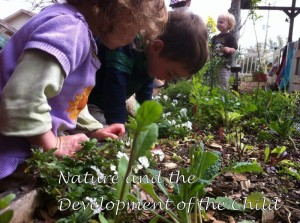 The Importance of Nature and the Development of the Child