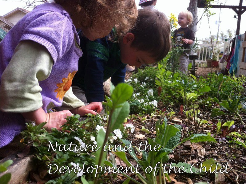 Nature_and_Development_Child