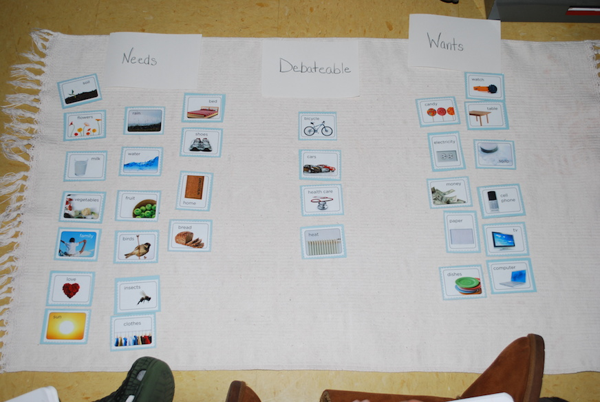 montessori_elementary_small_group_categorizing