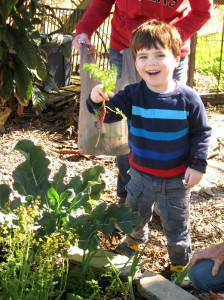 BLFN Children's Garden: First Spring Planting in 2014