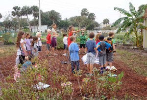 Lower Elementary Visits Children's Garden at Jarboe Park