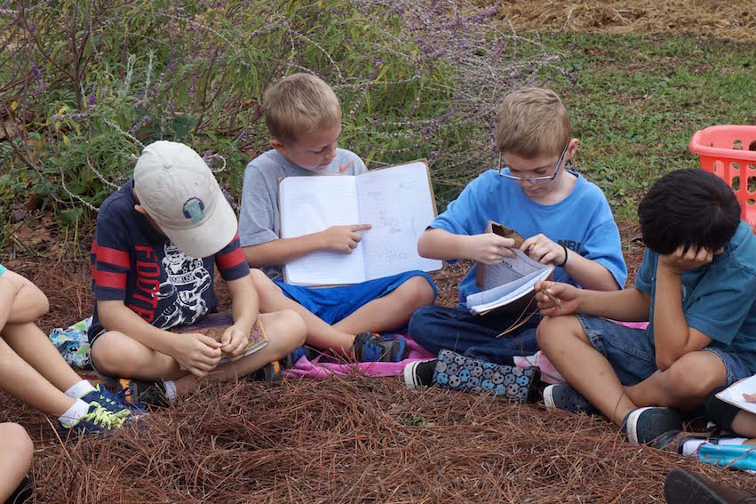 The students share their nature journals with the group.