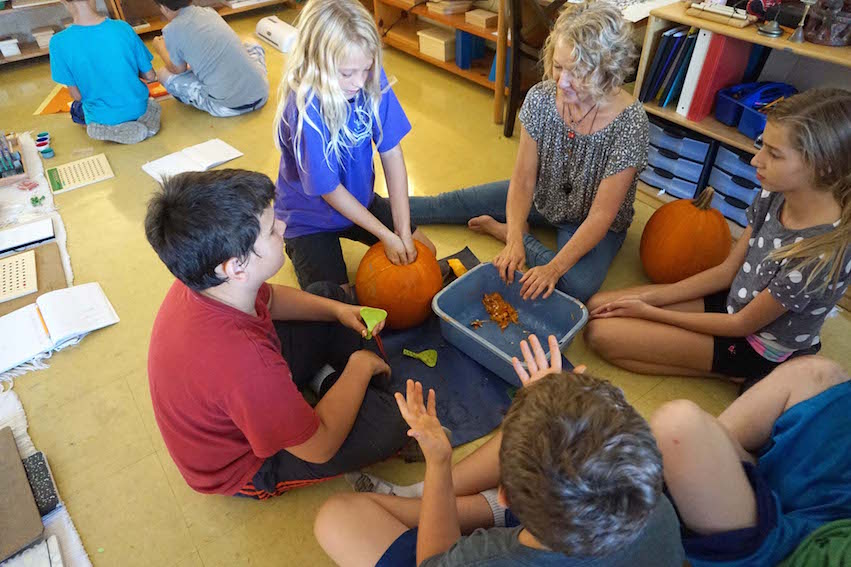 A grandparent volunteer helped the students carve pumpkins for Halloween.