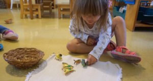 Butterflies in the Toddler Classroom